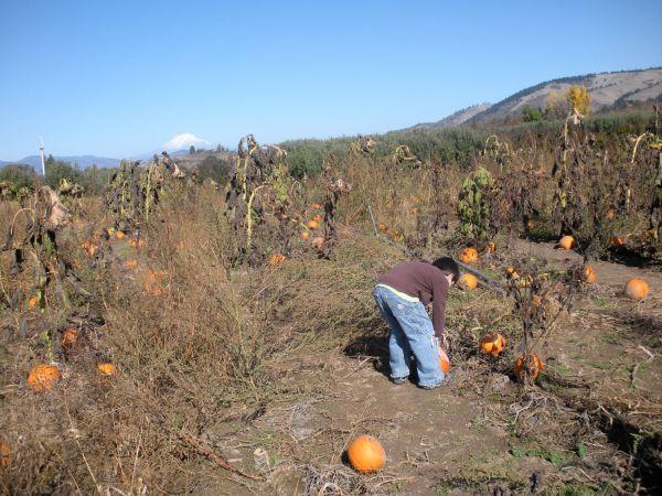 Fall 2009-7